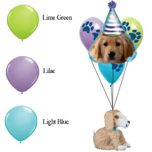 FINAL balloons and colors party pups